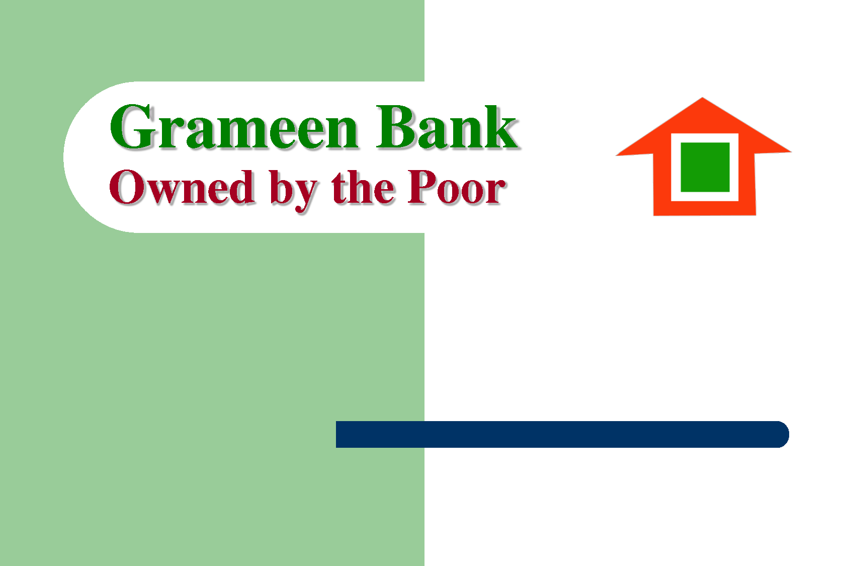 analysis report over view of grameen